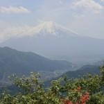 高川山で富士山と花いかだにうっとり
