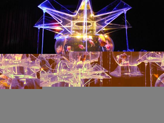 アートアクアリウム展の大奥