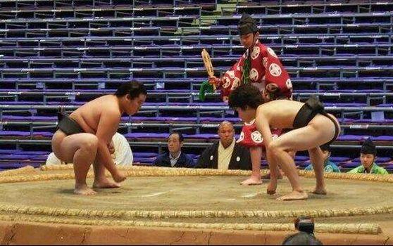 相撲の力士の育盛