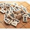 将棋の棋士を好きになる動画まとめ