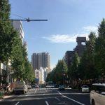 いちょうの木伐採問題にゆれる、東京都千代田区の白山通りを歩いてみた